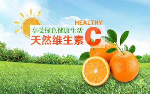 橙皇现代农业