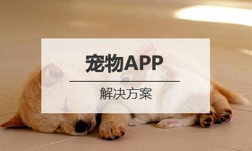 宠物APP开发解决方案